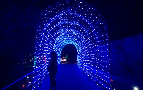 Central Arkansas Gets Lit: Christmas Lights Promote Holiday Spirit