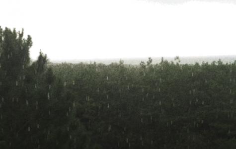 """Rain Rain,"" Never Go Away"