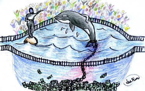 Prisoners Of Sea World: Is Death Their Only Escape?
