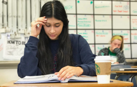 Photo of the Week: Midterm Mindset