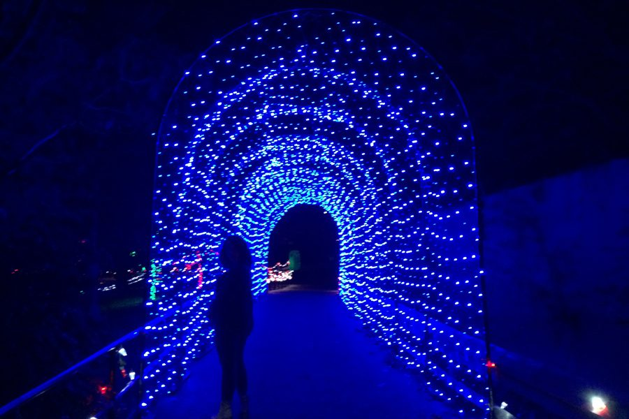 Central Arkansas Gets Lit: Christmas Lights Promote Holiday Spirit