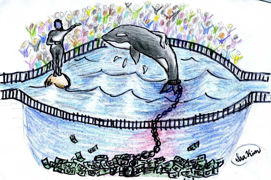 "Seaworld claims they ""rescue"" animals but they do quite the opposite. They steal animals from their natural habitat, from their family and loved ones, confine them causing psychological damage, and deprive them of food in order to make money."