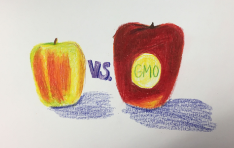 Truth About The Food Industry Hidden In GMOs