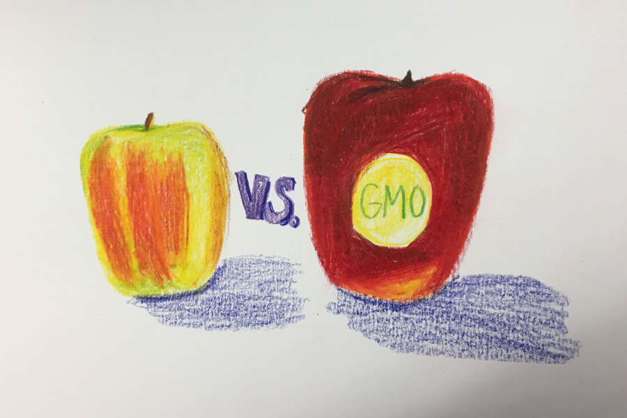 80 percent of all crops grown in the US, including corn, soy, sugar, cotton, and many more, contain genetically modified organisms (GMOs).