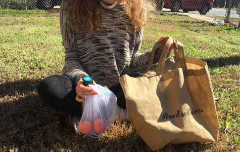 From walking into the grocery store with reusable bags and pulling out a smoothie in a glass jar with a metal straw during class, every action has the potential to make a positive impact on the earth. (Photo courtesy of Sydney Gastman)