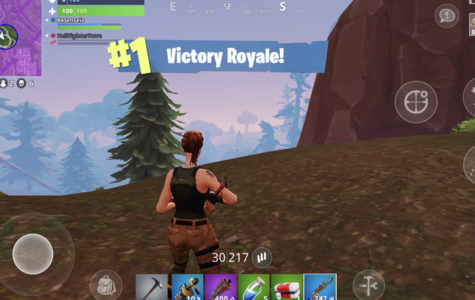 Fortnite Sweeps Nation, Video Gamers