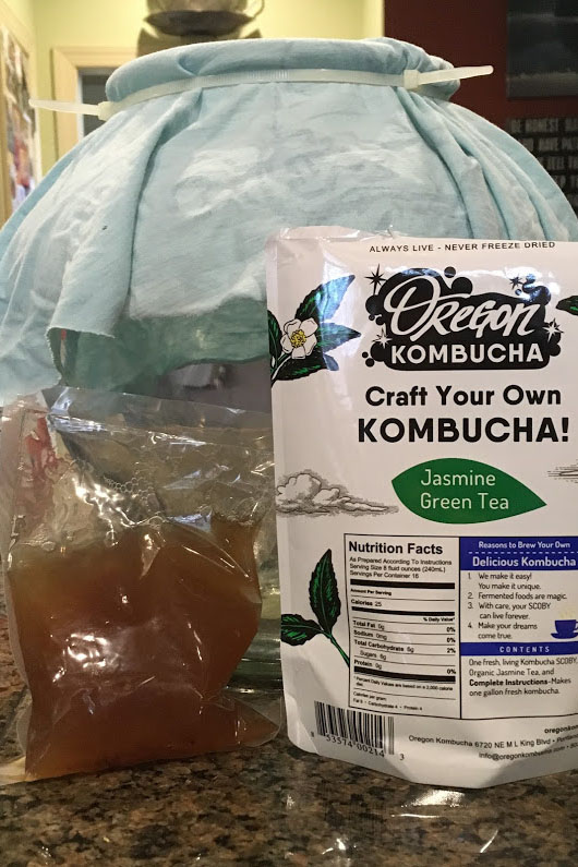 Kombucha+kit+in+the+process+of+being+made.+%28Photo+by+Sydney+Gastman%29
