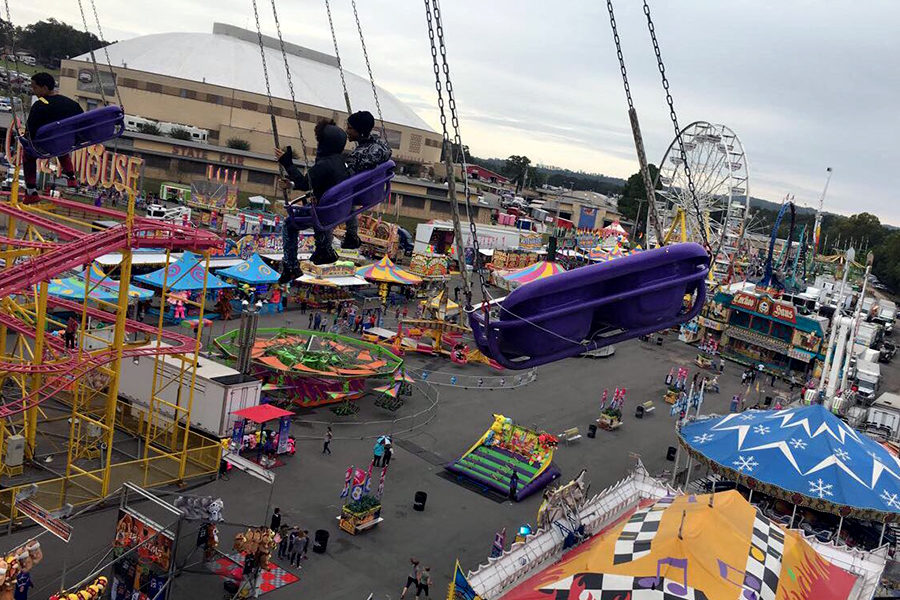 The swings give you a view of the fair and are a great ride for people that do't usually like rides. (photo by Casey Carter)