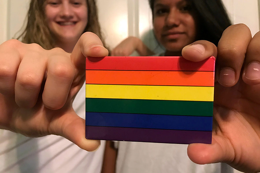 """""""I joined the Gay-Straight Alliance this year because I wanted to be an ally to students who may be going through some struggles with their journey as LGBT teenagers,"""" Maya said, """"My parents are part of the LGBT community, so it's important for me to be supportive of them and others. (photo by Lola Simmons)"""
