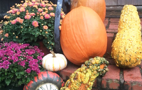 Pumpkin Carving History Reveals Meaningful Tradition
