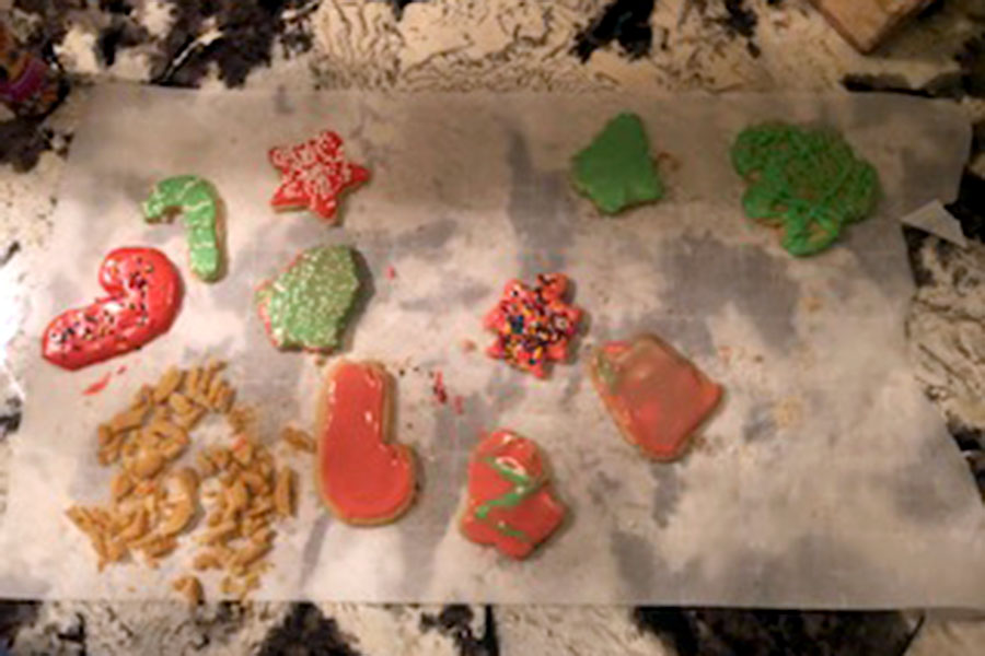 These colorfully decorated Christmas cookies are sure to bring sweetness to your holiday festivities. (photo by Parker Gunn)