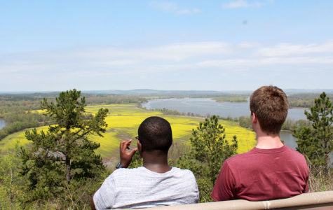 Quarry Trail Features Views of Nature Blooming