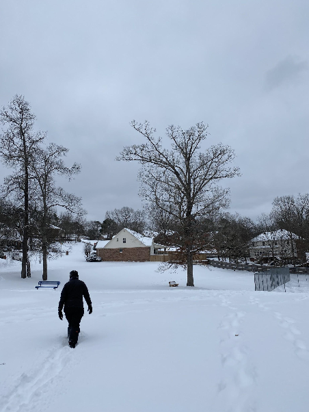 "Ethan Dial walks through the snow in the neighborhood park. ""Today, walking through my neighborhood is like walking through the doors of the wardrobe into Narnia,"" Dial said."